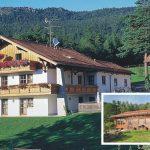 foto van vakantiehuis Geiger met op de achtergrond bergen met bomen. inzetfoto klein houden huisje